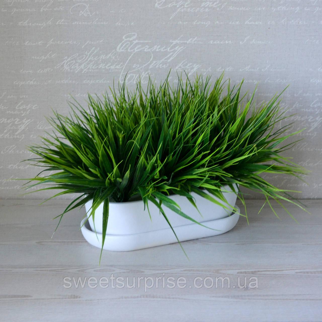 Декоративная трава в горшке для ресторана