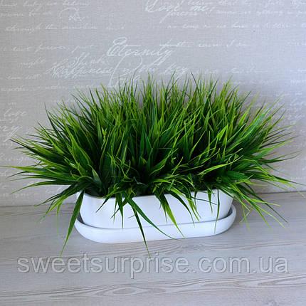 Декоративная трава в горшке для ресторана, фото 2