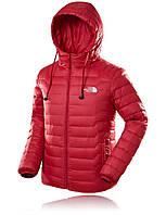 Куртка мужская осенняя The North Face / CRT-552