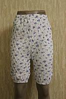 Женские панталоны на резинке жатка/кулир 100 % хлопок