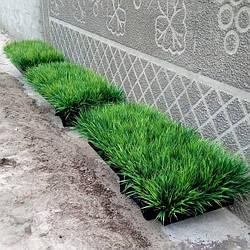 Декор из искусственной зелени