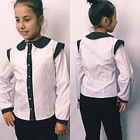 Блузка детская длинный рукав с отделкой в горошек 122-146см., фото 1