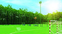 Забор металлический  для спортивных площадок. Сварная панель. Техна-Спорт высота 3м