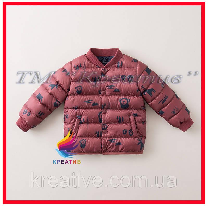 Курточки детские теплые оптом от 50 шт.