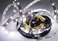 Светодиодная лента стандарт 2835-60 4 Лм, фото 1