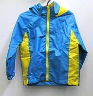 DJ12483 Вітровка дитяча синьо/жовта р.104