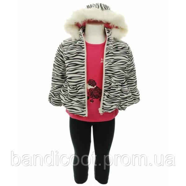 Набор куртка, кофта, леггинсы для девочки, размер 2Т. ТМ Baby Togs