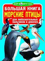 Большая книга. Морские птицы