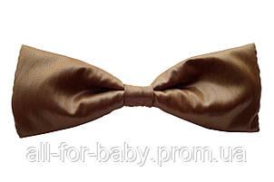 Галстук-бабочка Fashion Inn коричневый