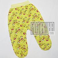 Ползунки (штаны) на широкой резинке р. 74 с начесом ткань ФУТЕР 100% хлопок ТМ Авекс 666 Желтый А