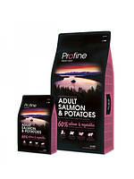 Profine ADULT SALMON & POTATOES лосось и картофель для  взрослых собак