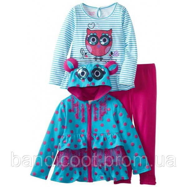 Комплект одежды для девочки. Кофта, реглан, лосины. ТМ  Nannette, размер 4 год