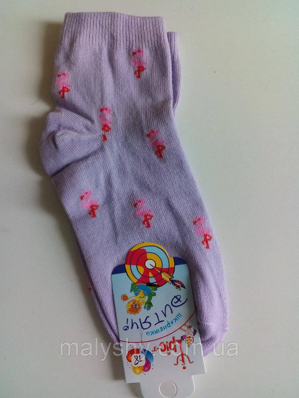 Детские носки демисезонные - Ирис р.18 (шкарпетки дитячі, Іріс)
