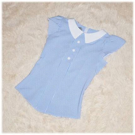 Блуза школьная с коротким рукавом белая в голубую полоску для девочки ТМ Newpoint 122 128 , фото 2