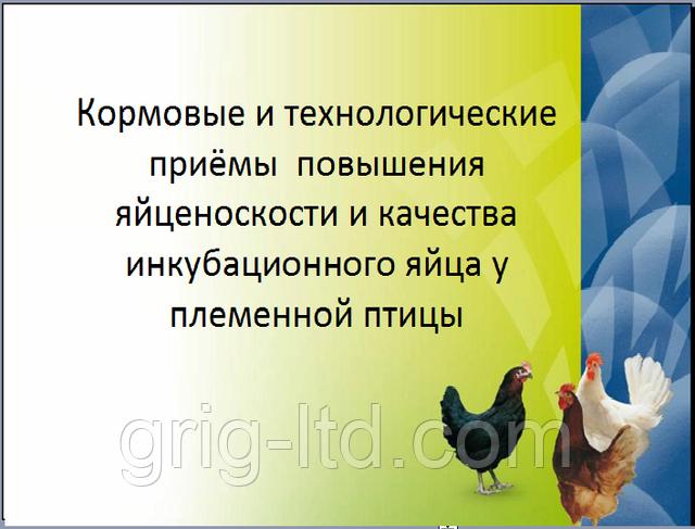 Кормовые и технологические приёмы повышения яйценоскости и качества инкубационного яйца у племенной птицы