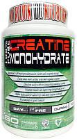DL Nutrition 100% pure Creatine Monohydrate 300g (Лимон)