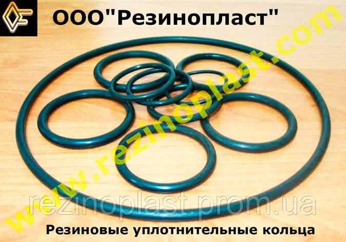 Кольцо уплотнительное круглого сечения 011-014-19-2-2 ГОСТ 18829-73 (ГОСТ 9833-73), фото 2