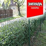 Сетка в рулонах с полимерным покрытием КЛАССИК Заграда™, фото 10