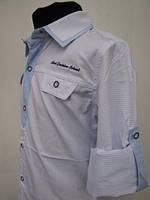 Рубашка для мальчиков 128,140,152 роста Нарядно-голубая