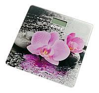Весы электронные напольные ROTEX RSB15-P