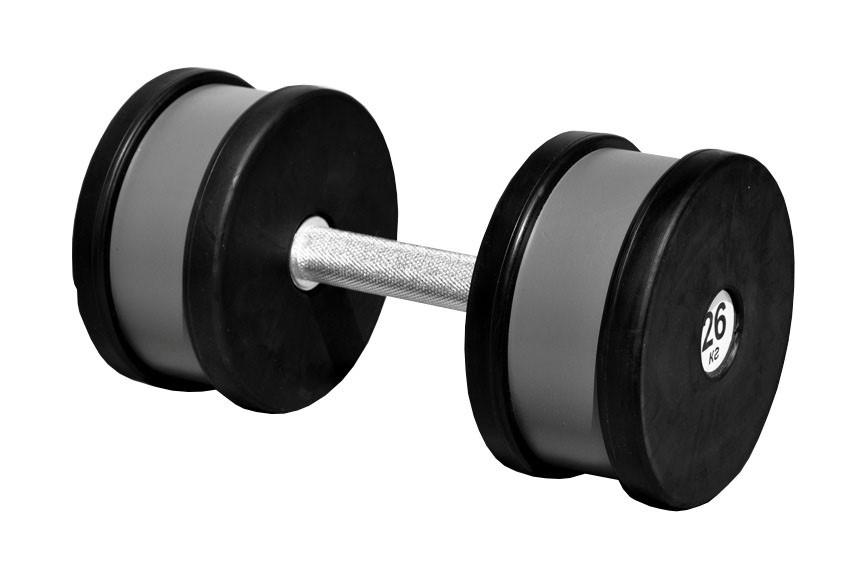 Гантель професійна 26 кг
