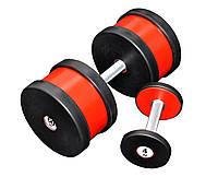 Гантель професійна 60 кг