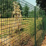 Сетка в рулонах с полимерным покрытием ПРЕМИУМ Заграда™, фото 6