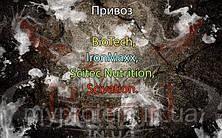 Поступление: BioTech, IronMaxx, Scitec Nutrition, Scivation.