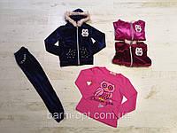 Велюровый костюм-тройка на девочку оптом, Seagull, 4-12 рр, фото 1