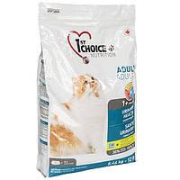 Сухой корм для взрослых котов и кошек 1st Choice Urinary Health склонных к МБК 5.44 кг
