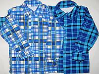 Детские рубашки с начёсом р.24