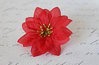 Декоративный цветок пуансетии, диаметр 6 см, фото 1