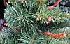 Искусственная Ель Литая 180 см Юлия Елка Новогодняя 1,8 метра, фото 3