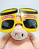Карнавальные Очки Стакан Ben & Jerry's Прикол для Вечеринки Маскарад, фото 5