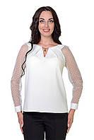 Женская блузка Код 6613