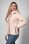Женская демисезонная куртка. Код модели К-115-37-12 Б. Цвет черный., фото 3