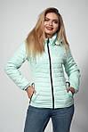 Женская демисезонная куртка. Код модели К-115-37-12 Б. Цвет черный., фото 2