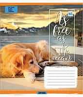 Тетрадь YES  18л. клетка DOGS & WATER