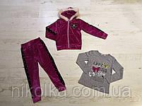 Велюровый костюм-тройка для девочек оптом, Seagull, 4-12 лет, арт. CSQ-52114, фото 3