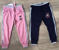Спортивные штаны для девочек, S&D, 98,104,110,110,116,122 см,  № CH-5351