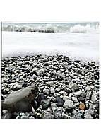 Фотокартина на холсте Морская пена, 100*100 см