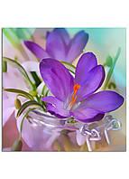 Фотокартина на холсте Скоро весна, 25*25 см