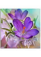 Фотокартина на холсте Скоро весна, 30*30 см