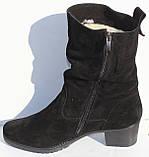 Замшевые женские полусапожки большого размера, замшевая обувь больших размеров от производителя мод ВБ1500, фото 2