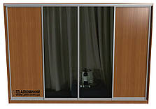 Шкаф купе | Дверь купе ДСП+Зеркало, фото 3