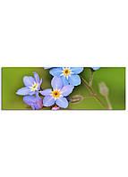 Фотокартина на холсте Дикий цветок, 33*95 см