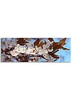 Фотокартина на холсте Вишневый сад, 33*95 см