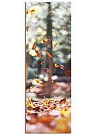 Фотокартина на холсте Листопад, 33*95 см
