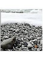 Фотокартина на холсте Морская пена, 40*40 см