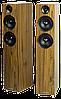 Oбзор Acoustic Energy АЕ109
